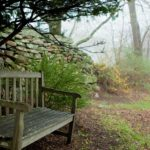 Garden Bench in fog at Stonecroft near Mystic