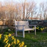 A bench by a stone wall surrounded by daffodils at Stonecroft Country Inn near Mystic CT