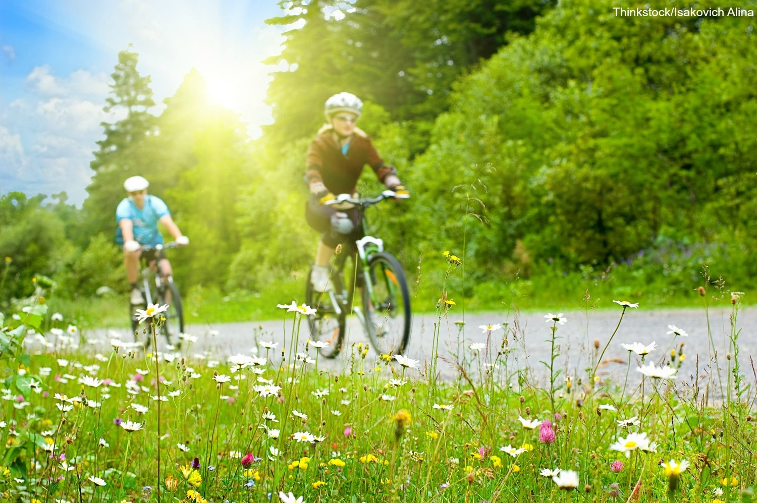 Have an Adventure on 6 of the Most Exciting Bike Trails in