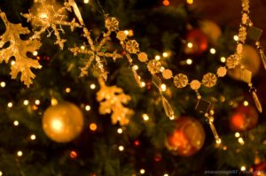See decorations at the Mystic Christmas Boat Parade