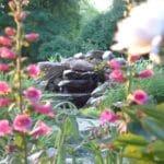 Stonecroft garden pond